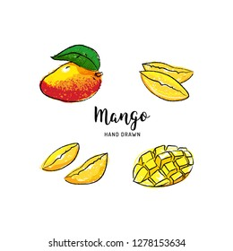 Mango fruit drawing Vector hand drawn mango, Watercolor colorful mango fruits. Vector isolated icons set
