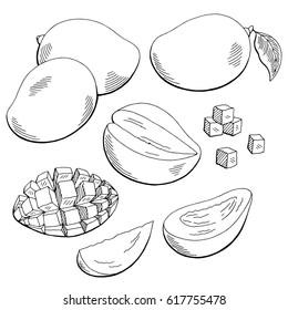 Mango fruit graphic black white isolated sketch illustration vector
