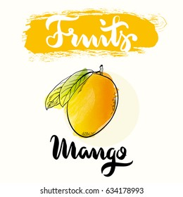 Mango fruit label design for product. Collection of food label design. Mango vector illustration with hand drawn word typography.