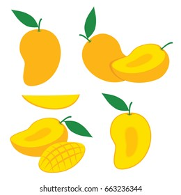 Mango Slice Vector Set. Mango Illustration Fruit Vector Design Stock Image