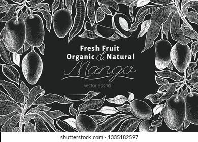 Mango tree vintage design template. Botanical mango fruit frame. Engraved mango. Retro illustration on chalk board