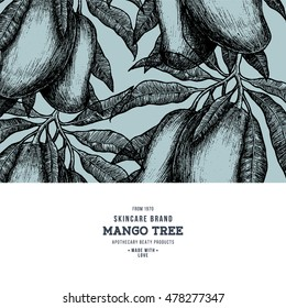 Mango tree vintage design template. Botanical mango fruit frame. Engraved mango. Vector illustration