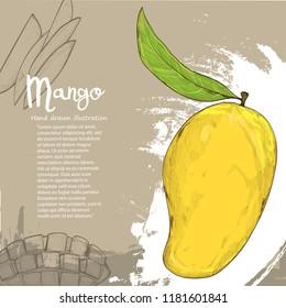 Mango vector illustration on background design. fruit background.