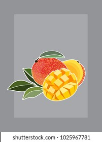Mango vector illustration with white outline on grey background