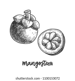 Mangosteen Drawing Images Stock Photos Vectors Shutterstock
