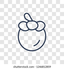 Mangosteen icon. Trendy linear Mangosteen logo concept on transparent background from Fruits and vegetables collection