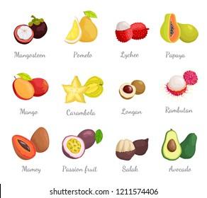 Mangosteen pomelo exotic tropical fruits set vector. Pitaya and carambola, salak and mamey, passion fruit lychee and avocado. Rambutan and papaya
