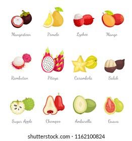 Mangosteen and pomelo, lychee and mango set exotic tropical fruits vector. Succulent carambola sliced star. Rambutan and pitaya chompoo, sugar apple