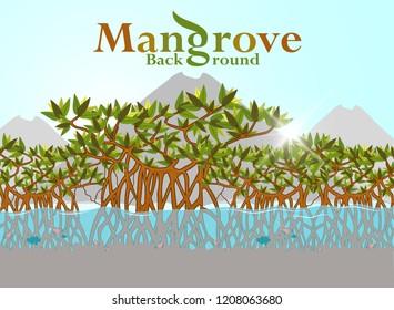 Mangrove forest background. illustration. eps10