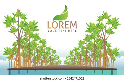 mangrove illustration images stock photos vectors shutterstock https www shutterstock com image vector mangrove forest background vector eps 10 1542471062