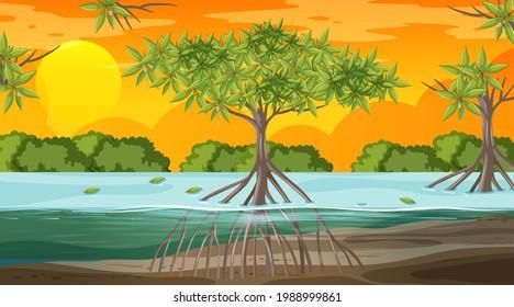 Mangrove forest landscape scene at sunset time illustration