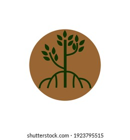 mangrove tree, logo vector with circle shape, iconic logo designs of tree