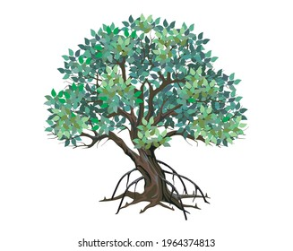 Mangrove tree vector illustrations, ready to print isolated on white background
