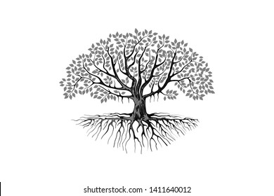 mangrove vector images stock photos vectors shutterstock https www shutterstock com image vector mangrove tree vector silhouette black white 1411640012