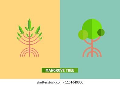mangrove tree vector,illustration
