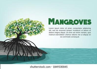 Mangroves background vector eps 10. Illustration of world mangroves day.