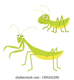 Mantis, grasshopper icon set. Cute cartoon kawaii funny character. Green insect isolated. Praying mantid. Big eyes. Smiling face. Flat design. Baby clip art. White background. Vector illustration