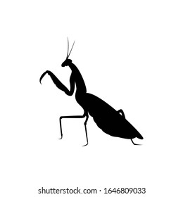 mantis insect silhouette. vector illustration of mantis insect