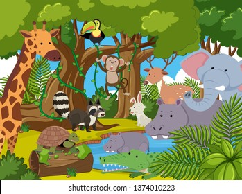 Many animal in the jungle illustration