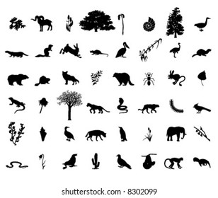 many animals and plants in vector (1)