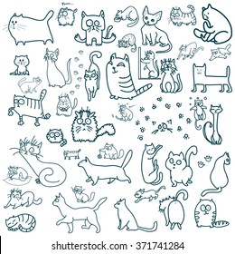 Many cats. Linear cats. Cool cats. Cute cats. Hand drawn cats.
