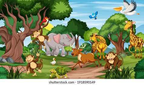Many different animals in the forest scene illustration