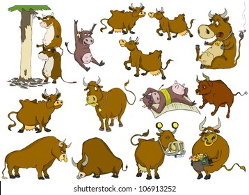 Many different cows and bulls on a white background
