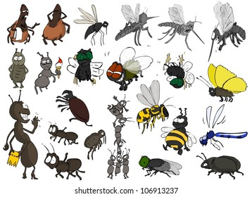 Many different insects on a white background