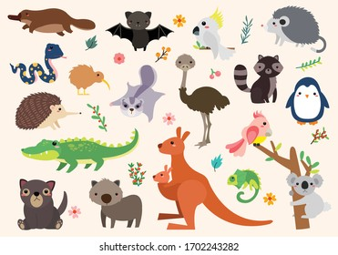 Many small and large wildlife in Australia