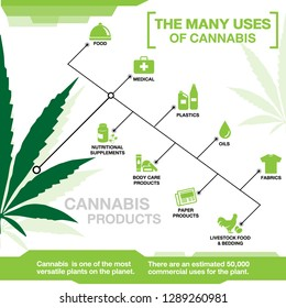 The many uses of cannabis, hemp, marijuana  info graphic on white background.