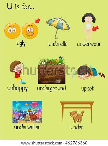 Many Words Begin Letter U Illustration Stock Vector (Royalty Free