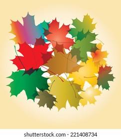 Maple autumn falling leaves, vector illustration.