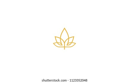 maple cannabis logo icon vector