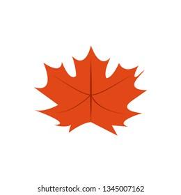 Maple Dry Leaves Vector Symbol Illustration