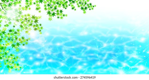 Maple early summer background