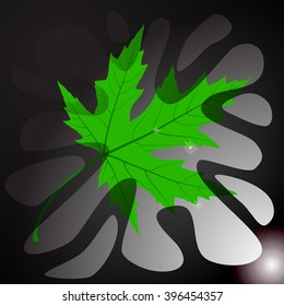 Maple Leaf. Abstract Illustration.