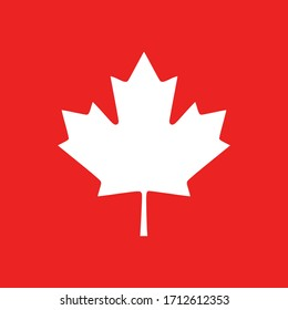 Maple leaf and background as icon