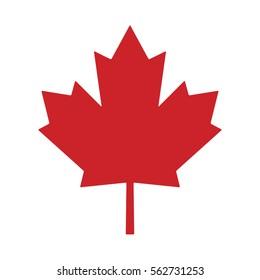 maple leaf canada vector symbol icon design. Beautiful illustration isolated on white background