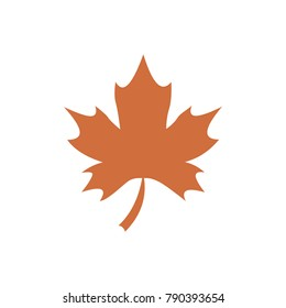 Maple leaf flat icon