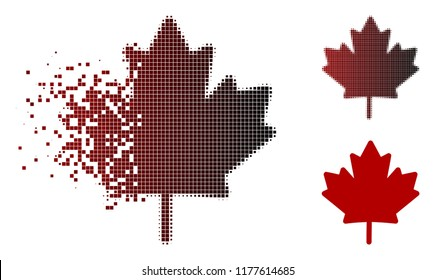 Maple leaf icon in sparkle, pixelated halftone and undamaged solid variants. Pixels are grouped into vector disappearing maple leaf symbol.