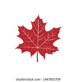 maple leaf icon symbol vector