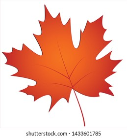 Maple leaf images written with vector