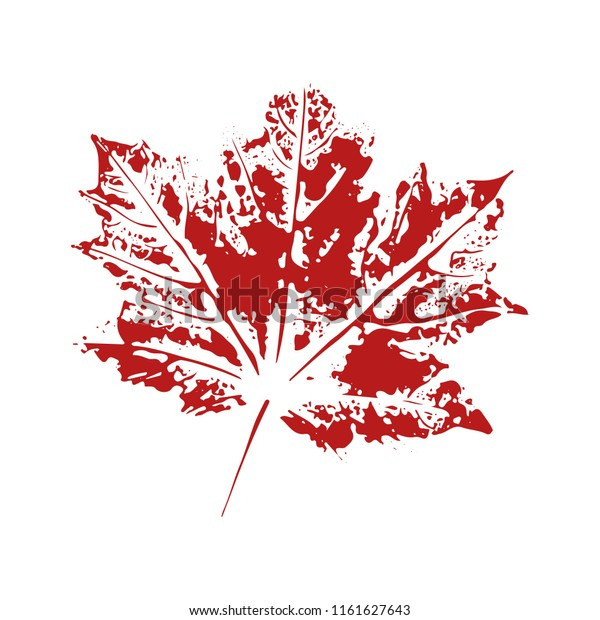 Maple Leaf Imprint On Transparent Background Stock Vector Royalty Free 1161627643