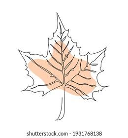 Maple leaf line art. Autumn leaves hand drawn design Minimalism art.