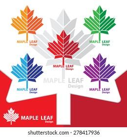 Maple leaf logo template design elements. vector illustration