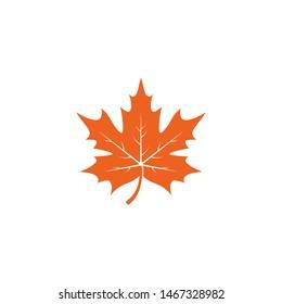 Maple leaf logo template vector icon illustration in flat design
