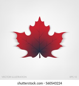 Maple leaf in a realistic style on a white background, isolated object. Vector illustration, botanical element of autumn dry leaf for your projects.
