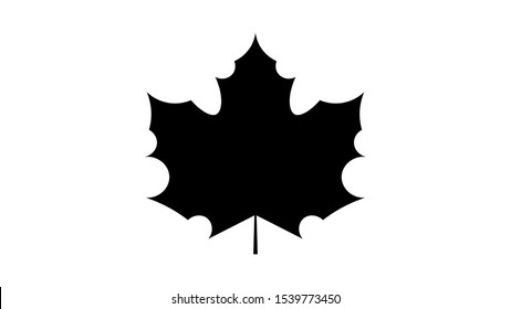 Maple leave icon vector design. Fall icons vector