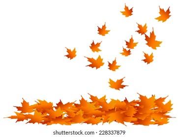 Leaf Pile Images Stock Photos Vectors Shutterstock