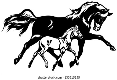 mare with foal,black and white side view vector illustration
